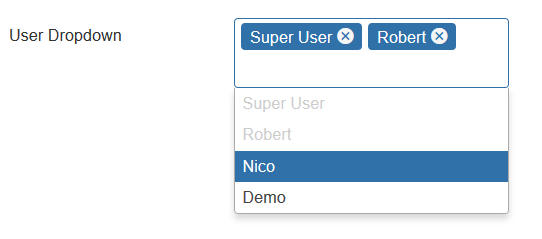 CustomFields User Multiple selection