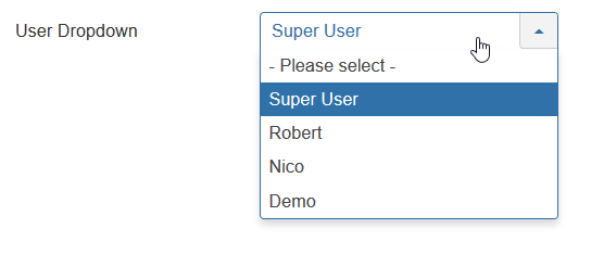 CustomFields User Single selection
